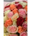 101 роза микс в упаковке